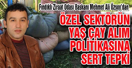 ÖZEL SEKTÖRÜN YAŞ ÇAY ALIM POLİTİKASINA  SERT TEPKİ