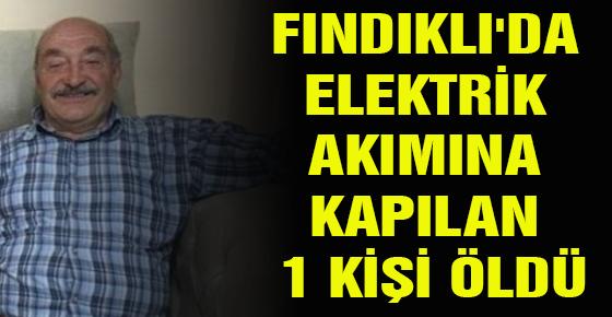 FINDIKLI'DA ELEKTRİK AKIMINA KAPILAN 1 KİŞİ ÖLDÜ