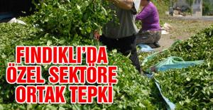 FINDIKLI'DA ÖZEL SEKTÖRE ORTAK TEPKİ