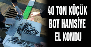 40 TON KÜÇÜK BOY HAMSİYE EL KONDU